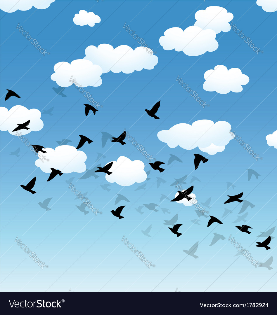 Birds and clouds in the sky vector | Price: 1 Credit (USD $1)