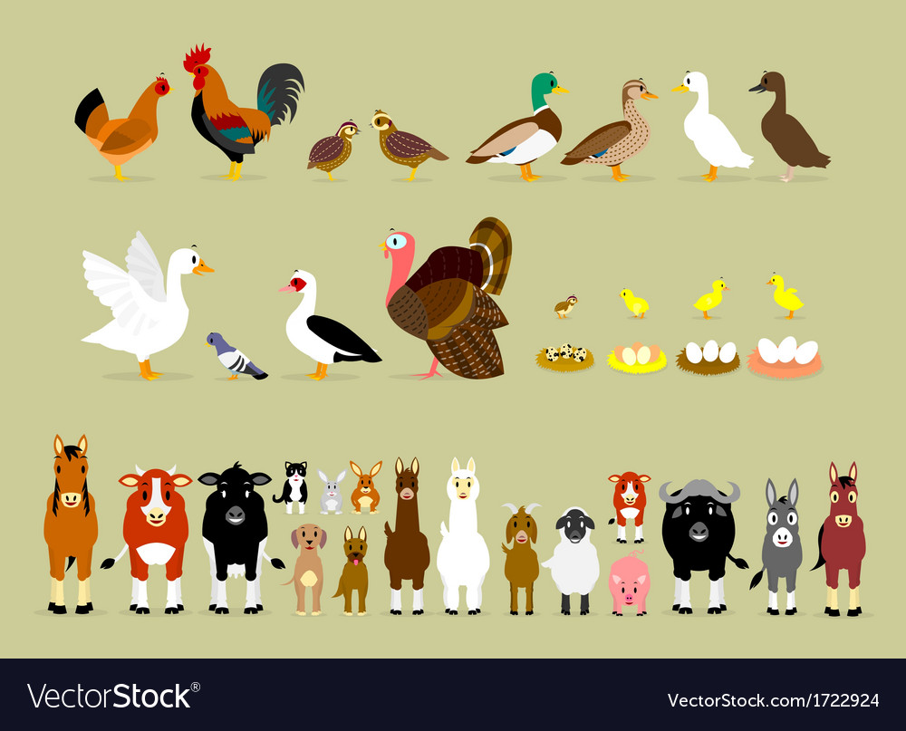 Cartoon farm characters part 2 vector | Price: 1 Credit (USD $1)