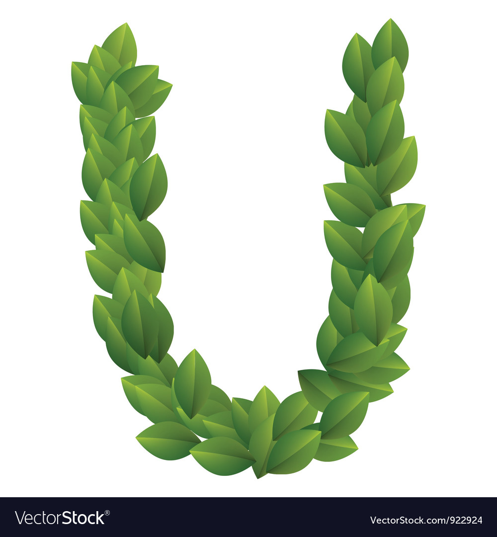 Letter u of green leaves alphabet vector | Price: 1 Credit (USD $1)