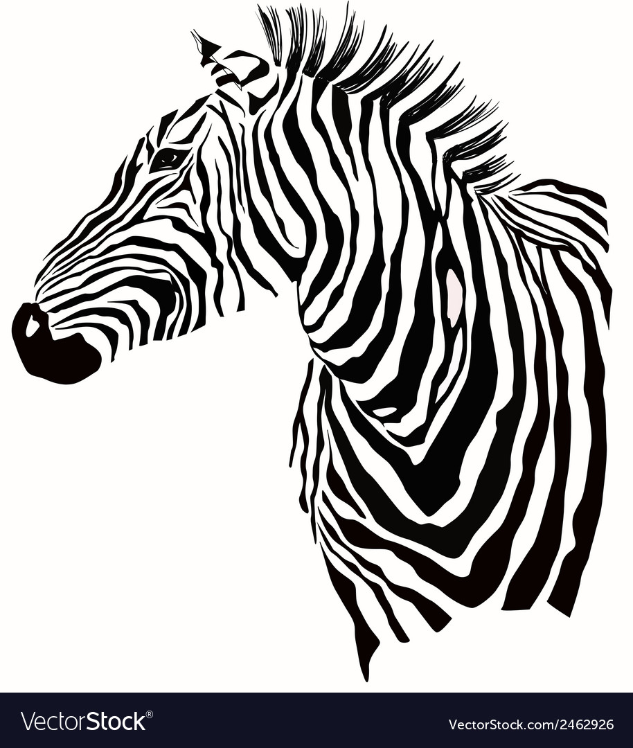Animal of zebra silhouette vector | Price: 1 Credit (USD $1)
