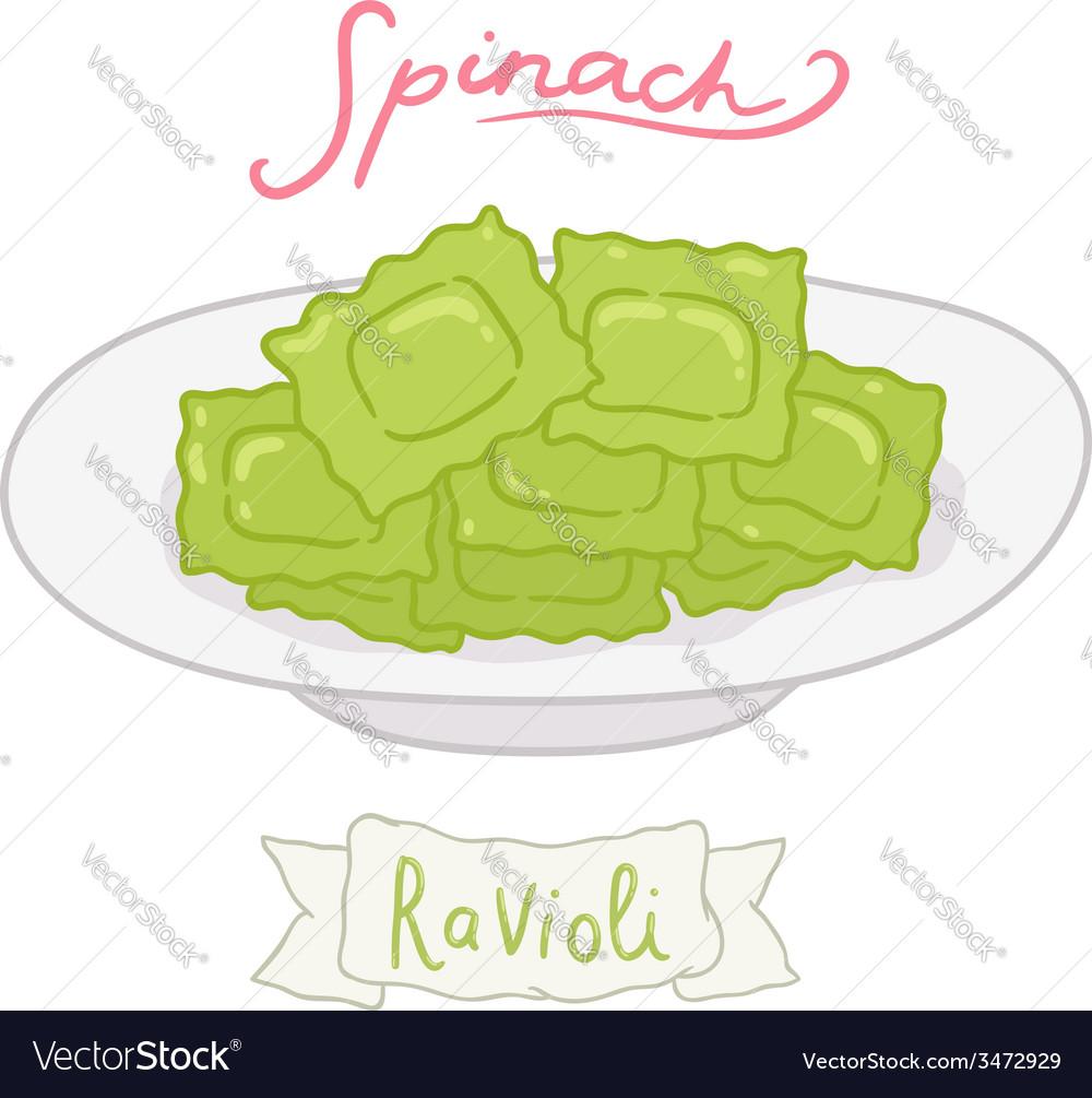Cartoon hand drawn spinach ravioli vector | Price: 1 Credit (USD $1)