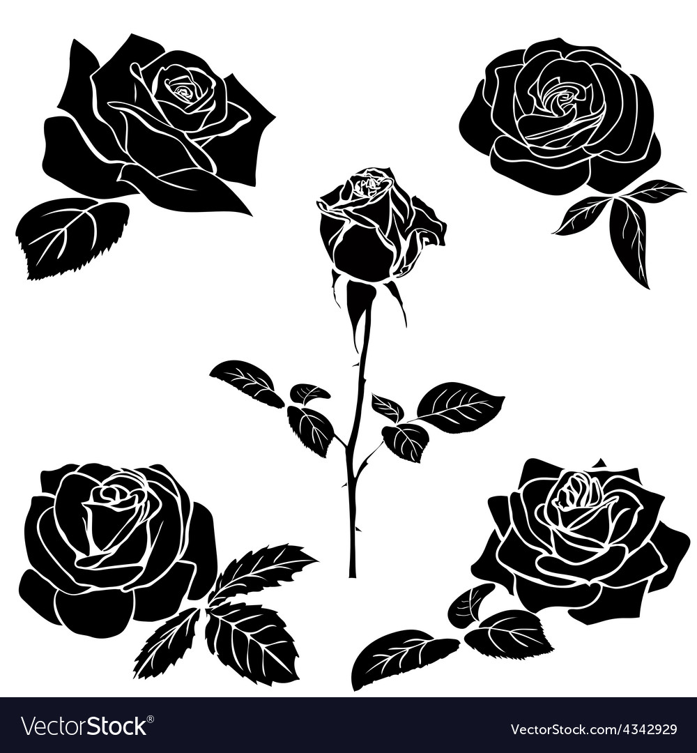 Silhouette of rose vector | Price: 1 Credit (USD $1)