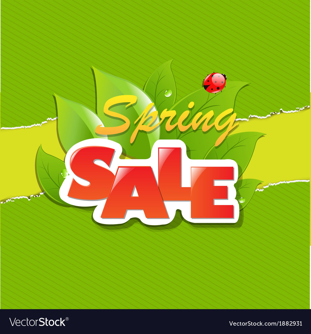 Green torn paper borders and spring sale banner vector | Price: 1 Credit (USD $1)