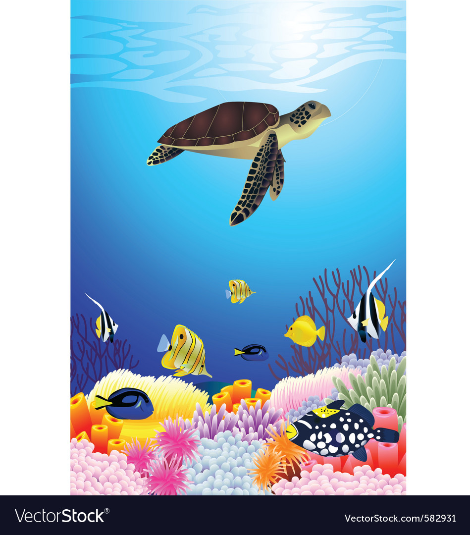 Sea life vector | Price: 3 Credit (USD $3)