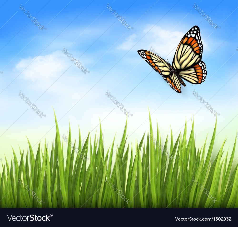 Nature grass butterfly background vector | Price: 1 Credit (USD $1)