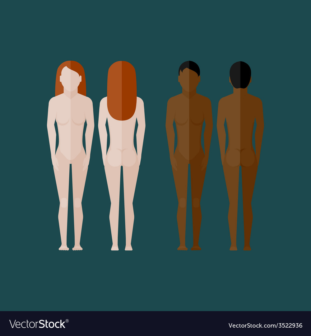 With naked women body front and back view in flat vector | Price: 1 Credit (USD $1)