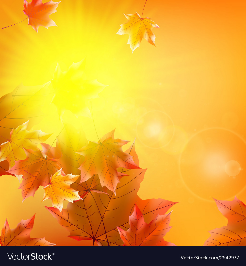Delicate autumn sun with glare on gold sky vector | Price: 1 Credit (USD $1)