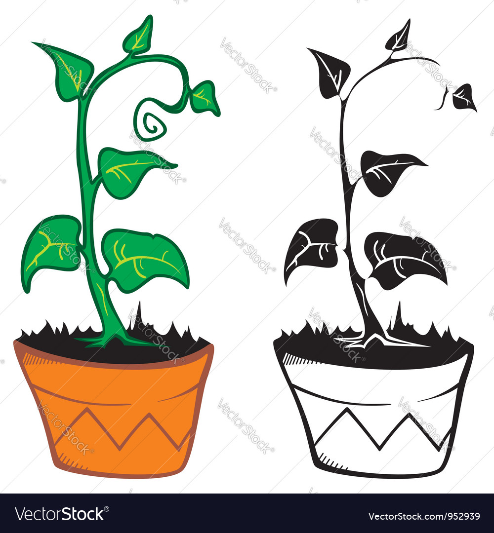 Plant in pot vector | Price: 1 Credit (USD $1)