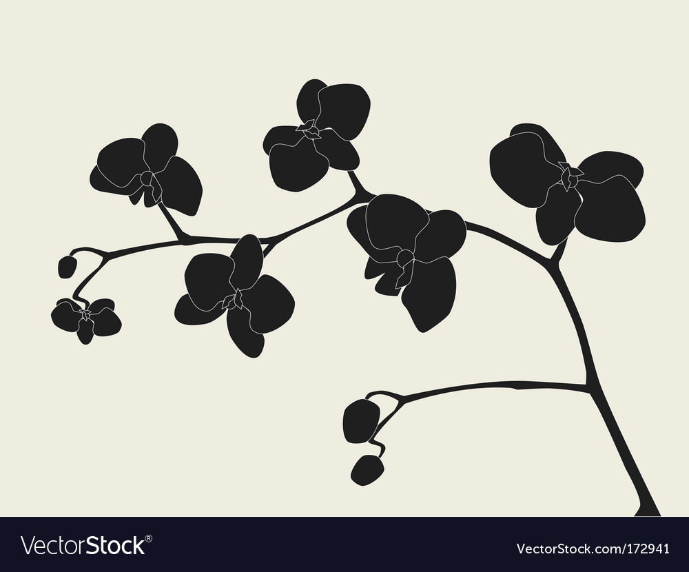 Orchid branch silhouette vector | Price: 1 Credit (USD $1)