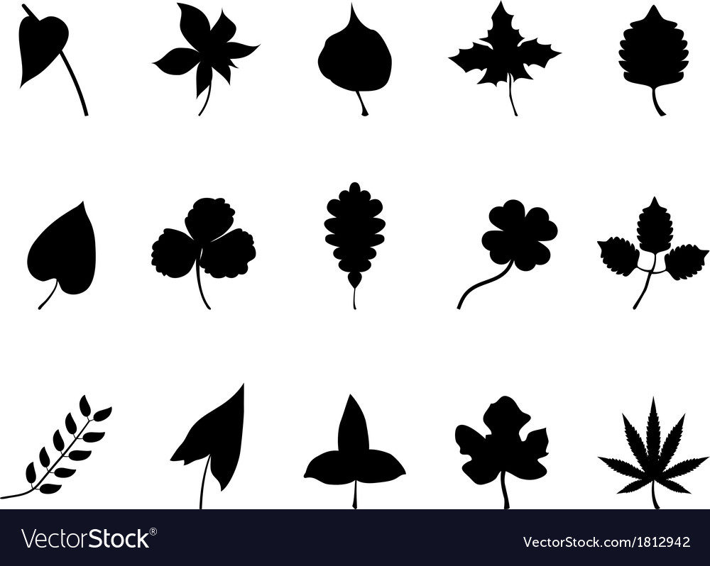 Black leaves silhouettes set vector | Price: 1 Credit (USD $1)