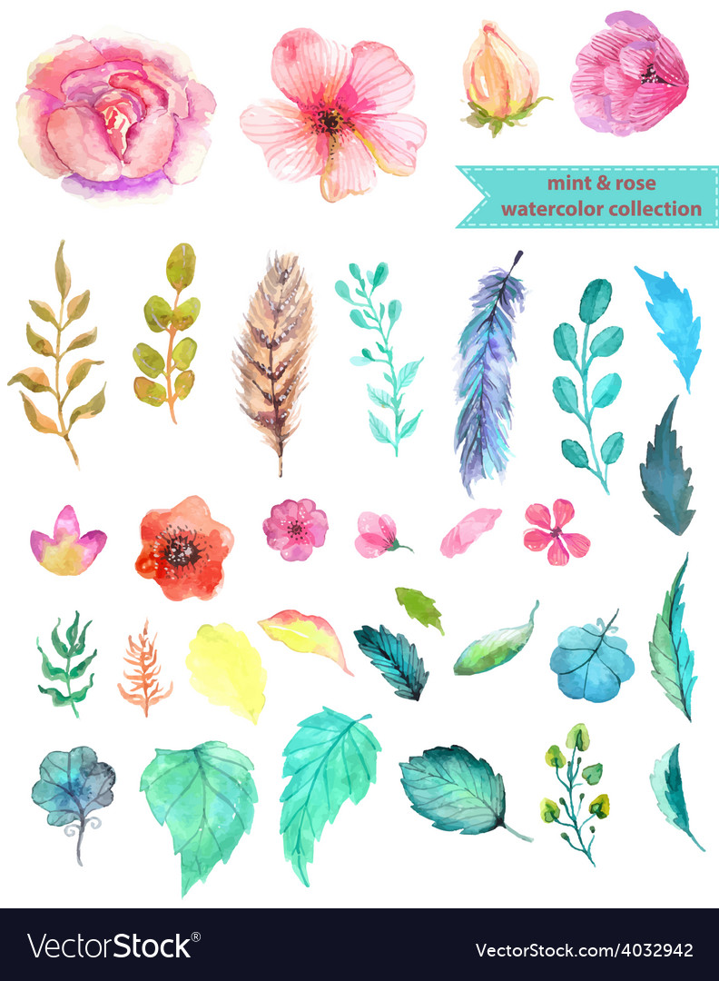 Watercolor floral collection vector | Price: 1 Credit (USD $1)