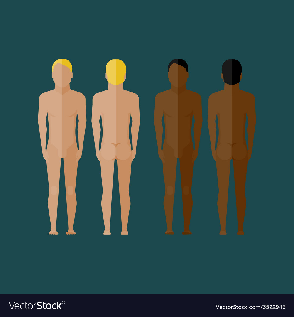With naked men body front and back view in flat vector | Price: 1 Credit (USD $1)