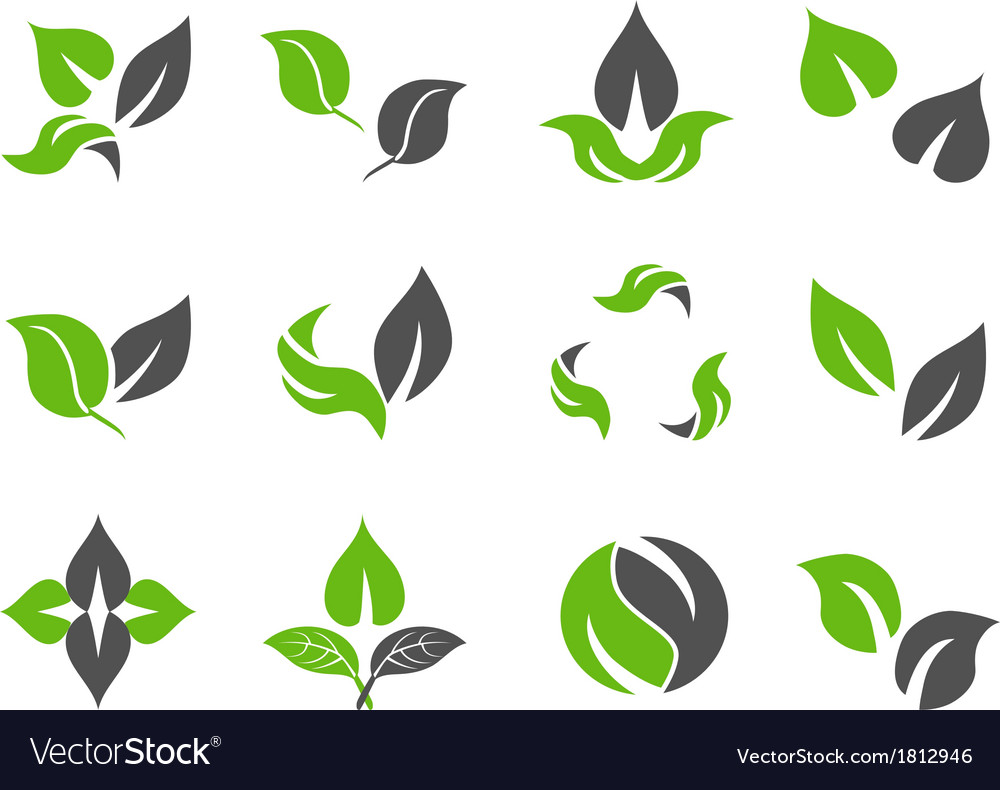 Green leaves design icons vector | Price: 1 Credit (USD $1)
