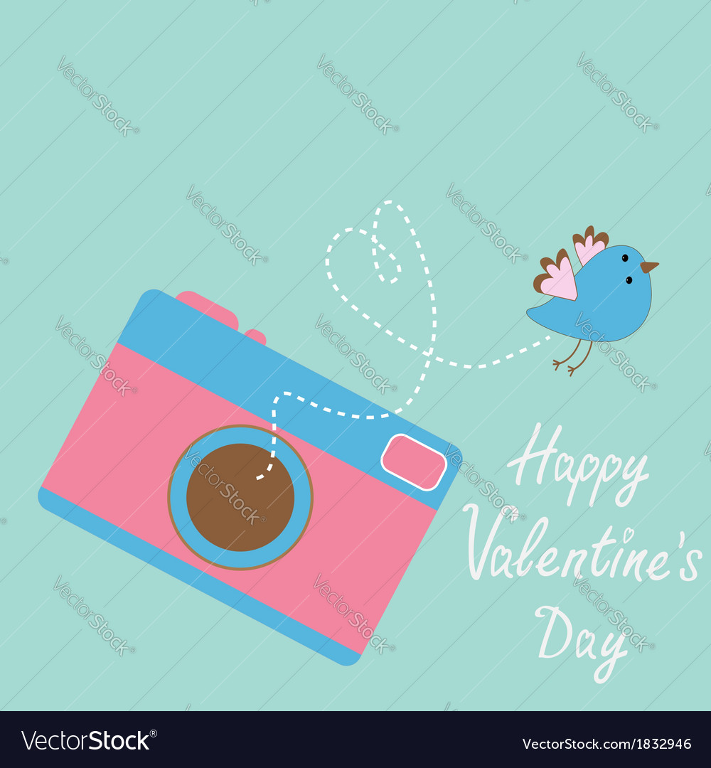 Photo camera with flying bird happy valentines day vector | Price: 1 Credit (USD $1)