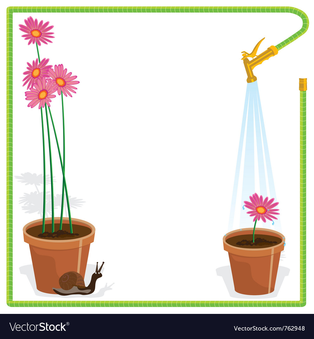 Garden party invitation vector | Price: 1 Credit (USD $1)