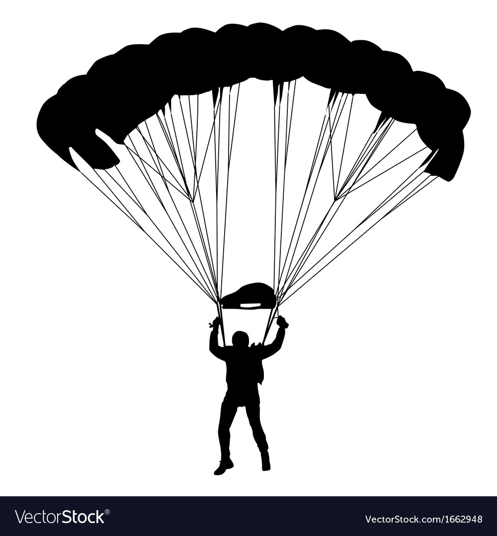Skydiver silhouettes parachuting vector | Price: 1 Credit (USD $1)