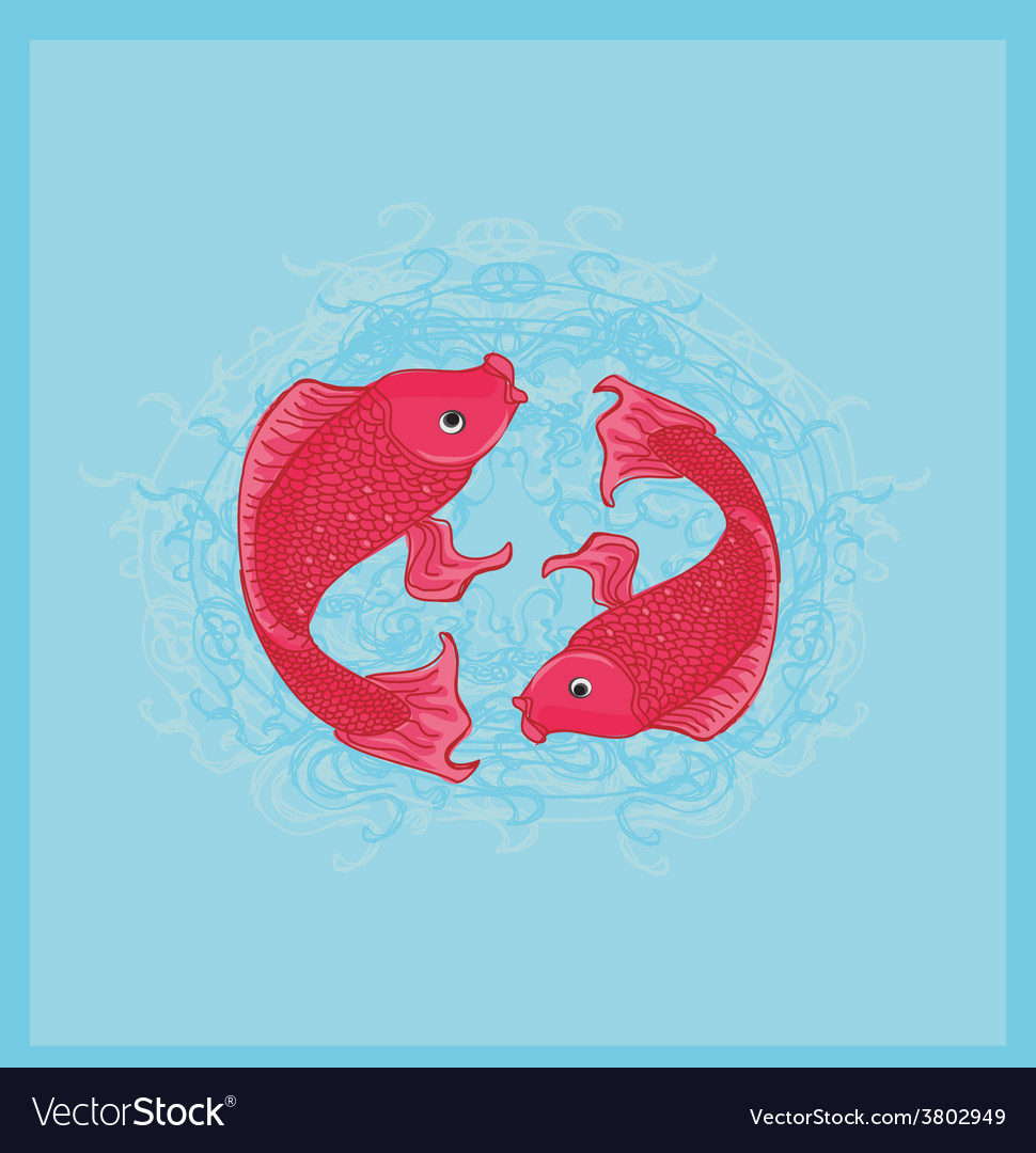 Two koi carps splashing in water and swim vector | Price: 1 Credit (USD $1)