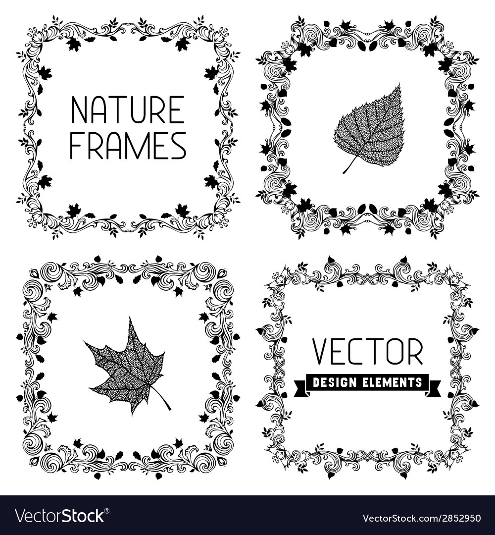 Set of calligraphic nature frames with leaves vector | Price: 1 Credit (USD $1)
