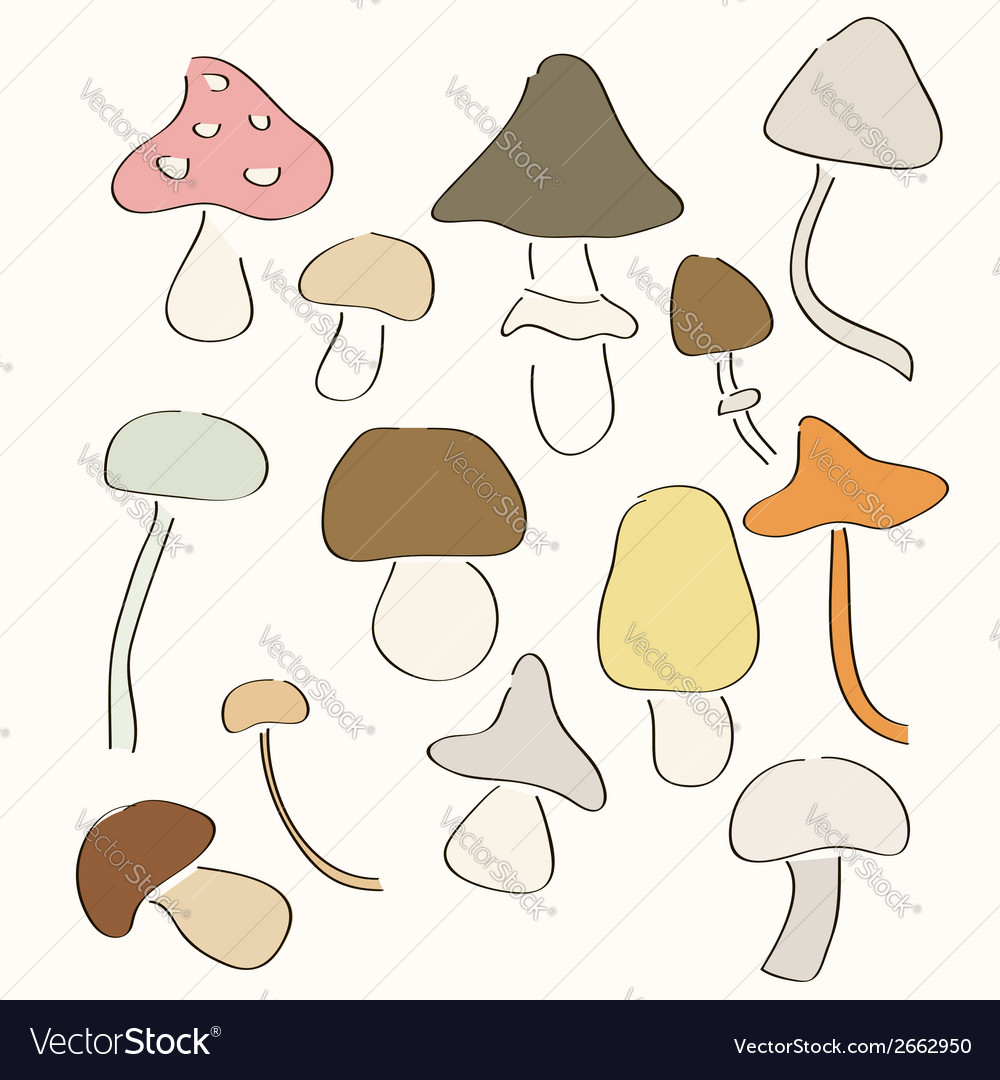 Set of hand drawn mushrooms vector | Price: 1 Credit (USD $1)