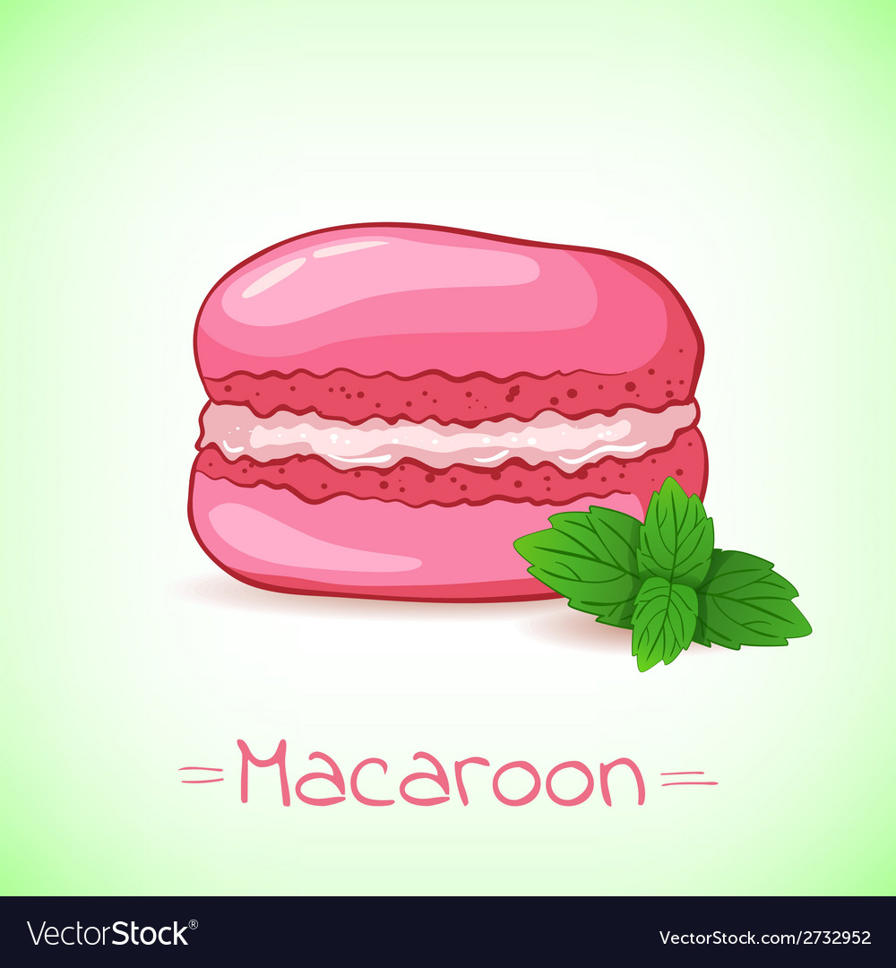 Beautiful of a french dessert macaroon and mint vector | Price: 1 Credit (USD $1)