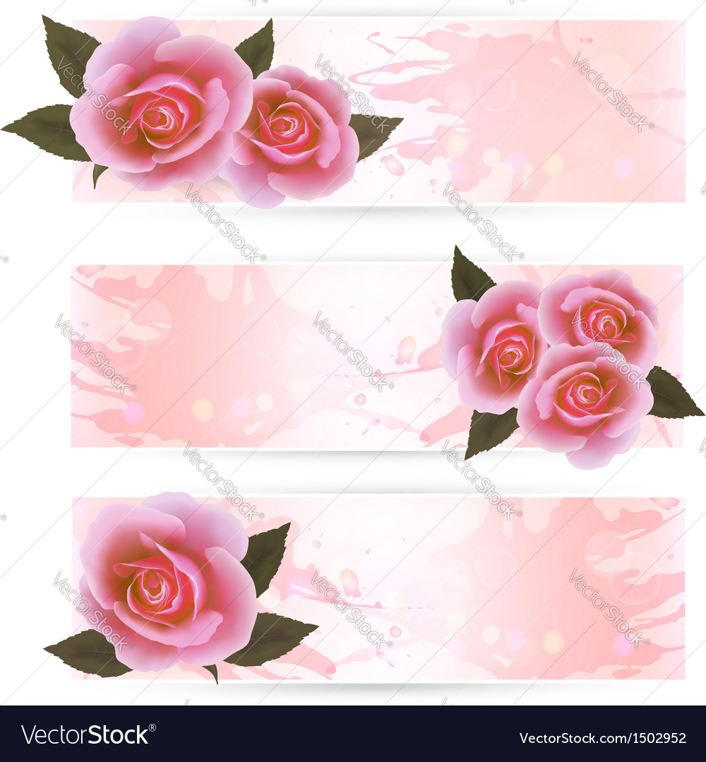 Pink roses banners vector | Price: 1 Credit (USD $1)