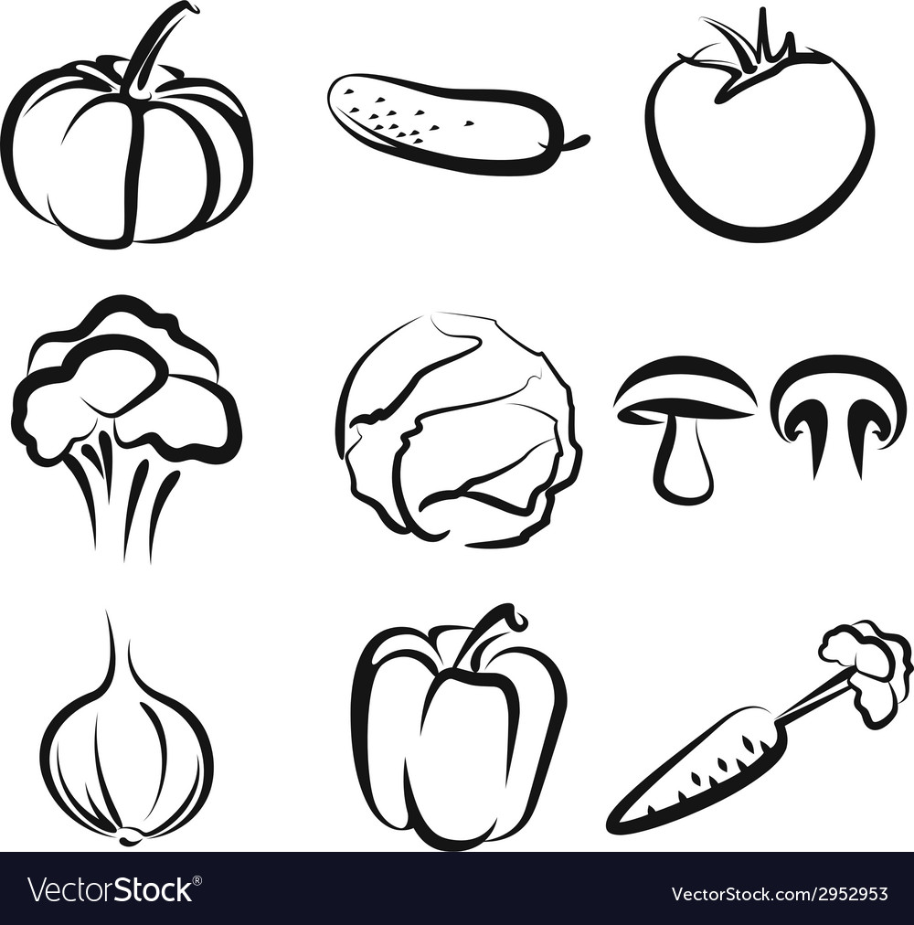 With a set of vegetables vector | Price: 1 Credit (USD $1)