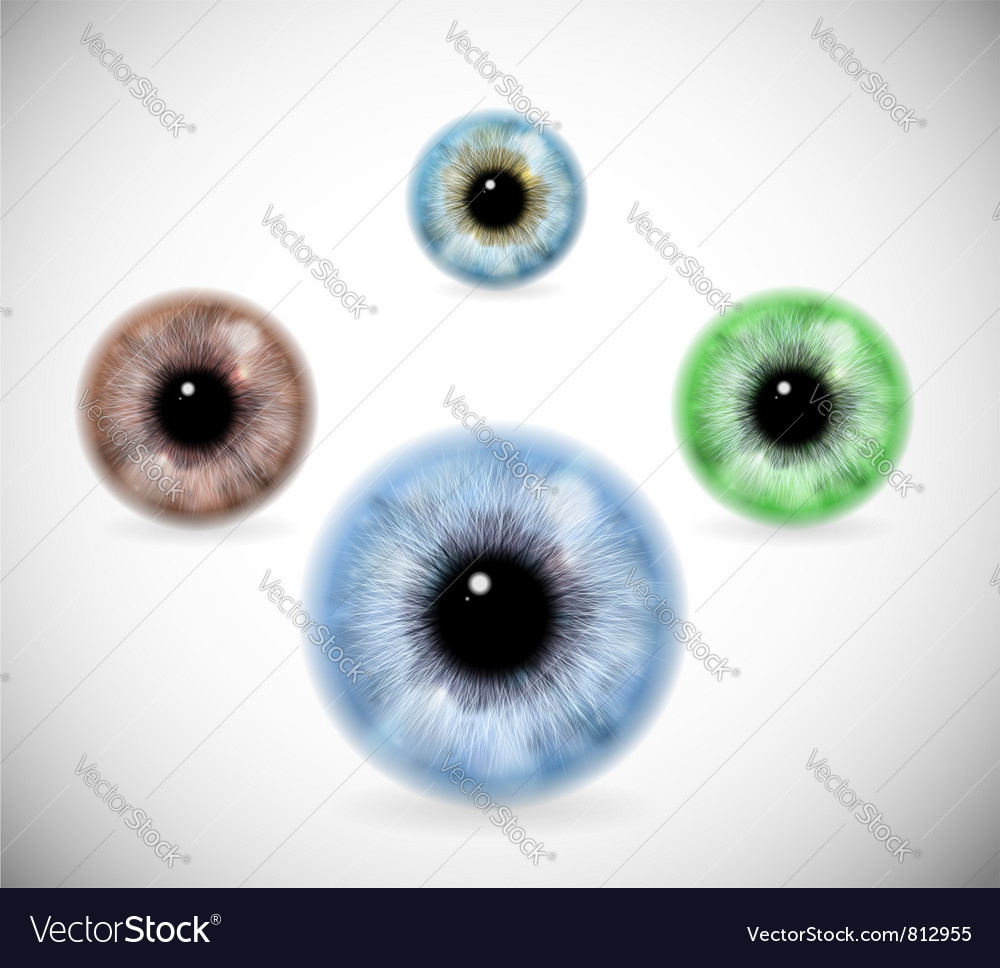Pupils of different colors vector | Price: 1 Credit (USD $1)