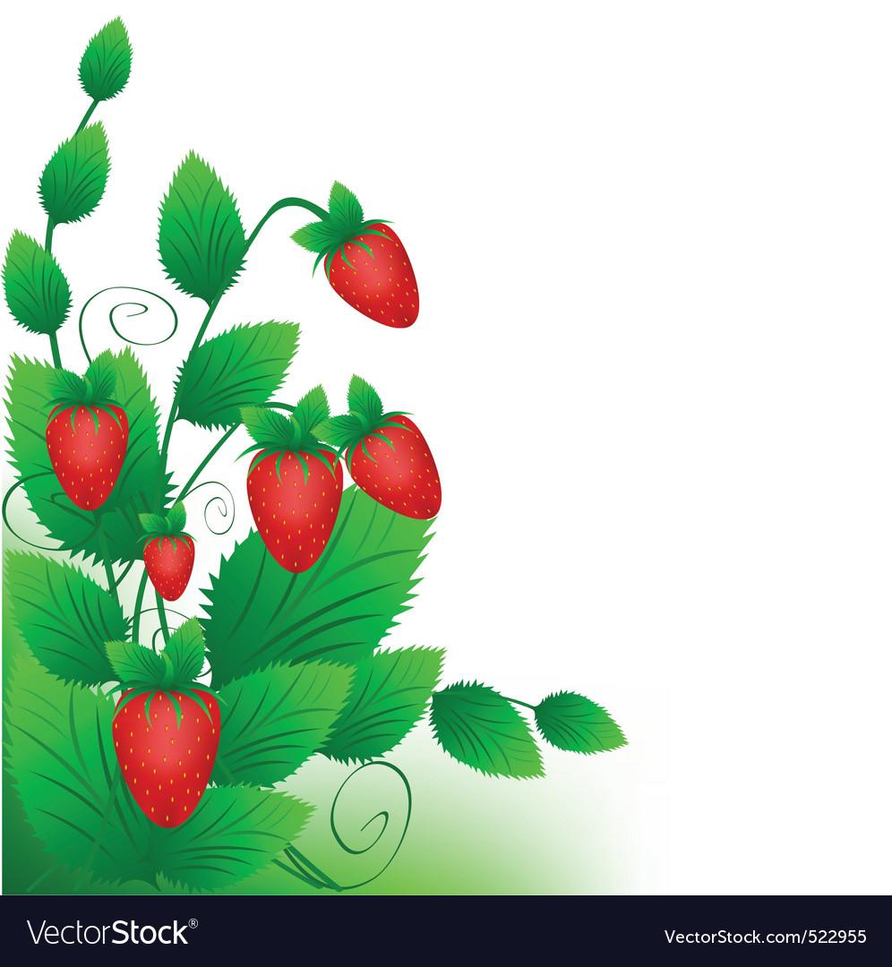 Strawberry cartoon vector | Price: 1 Credit (USD $1)