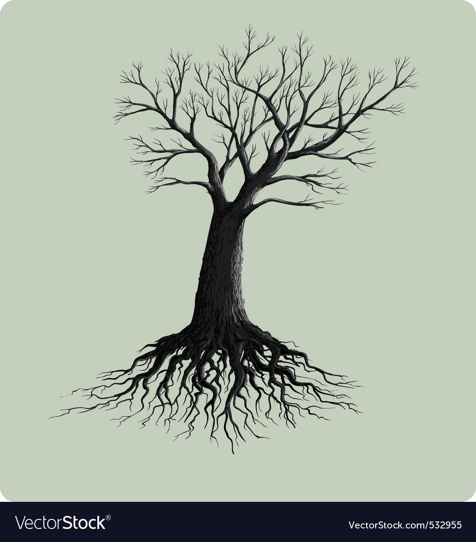Tree with roots vector | Price: 1 Credit (USD $1)
