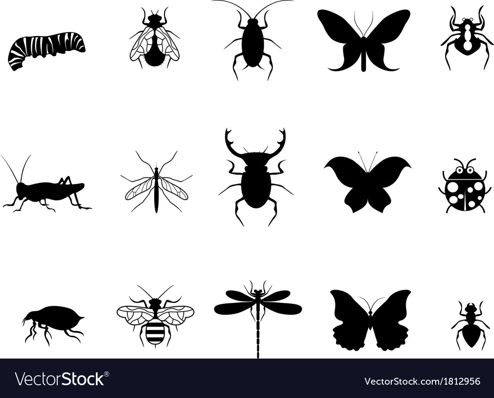 Insects icon set vector | Price: 1 Credit (USD $1)
