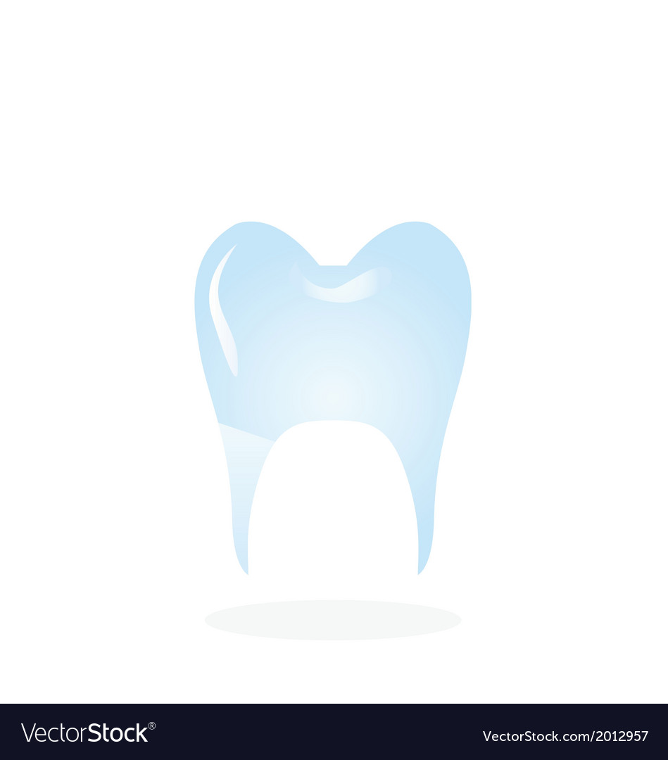 Healthy tooth isolated vector | Price: 1 Credit (USD $1)