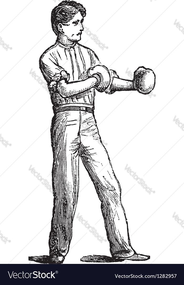 Vintage boxer sketch vector | Price: 1 Credit (USD $1)