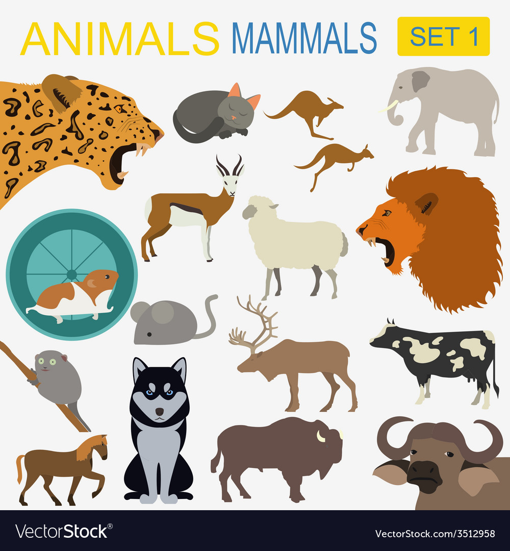 Animals mammals icon set flat style vector | Price: 1 Credit (USD $1)