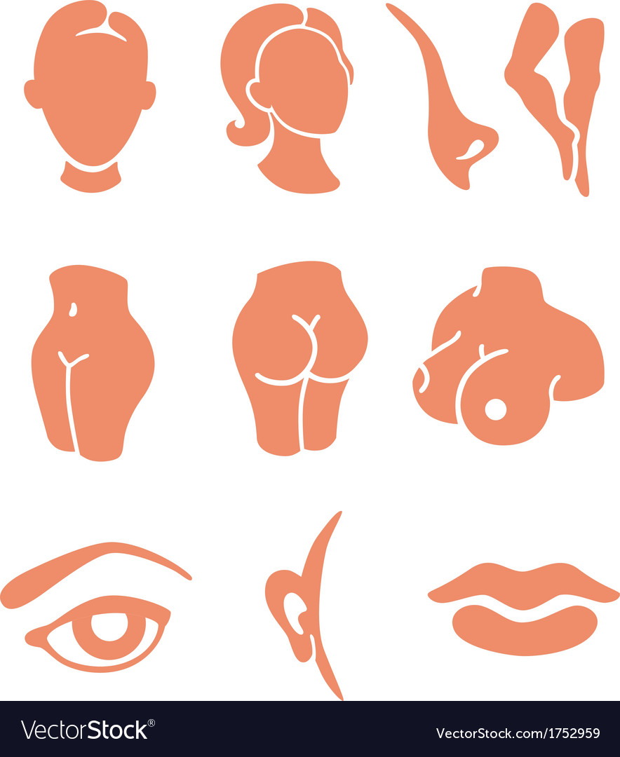 Body parts and face zones icon set vector | Price: 1 Credit (USD $1)