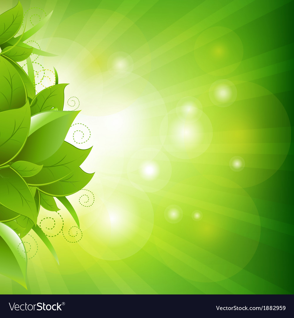 Green poster with leaves with grass vector | Price: 1 Credit (USD $1)