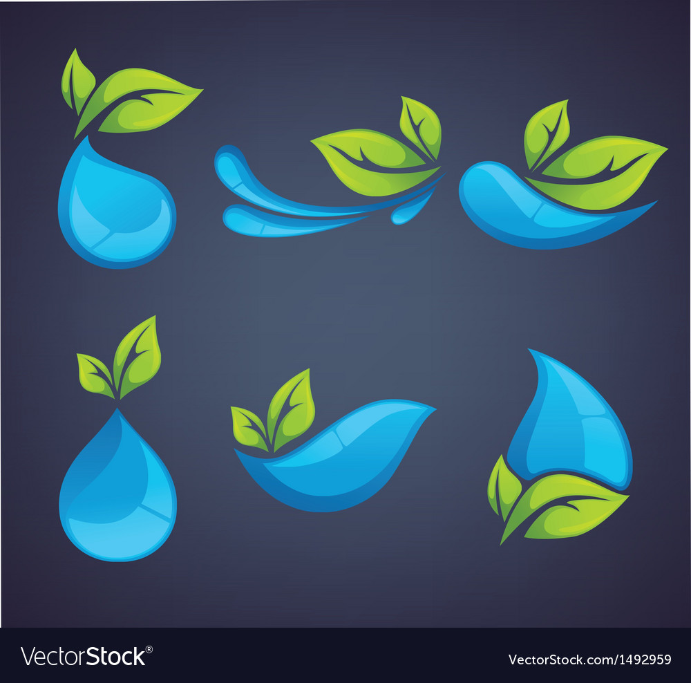 Leaves and drops vector | Price: 1 Credit (USD $1)