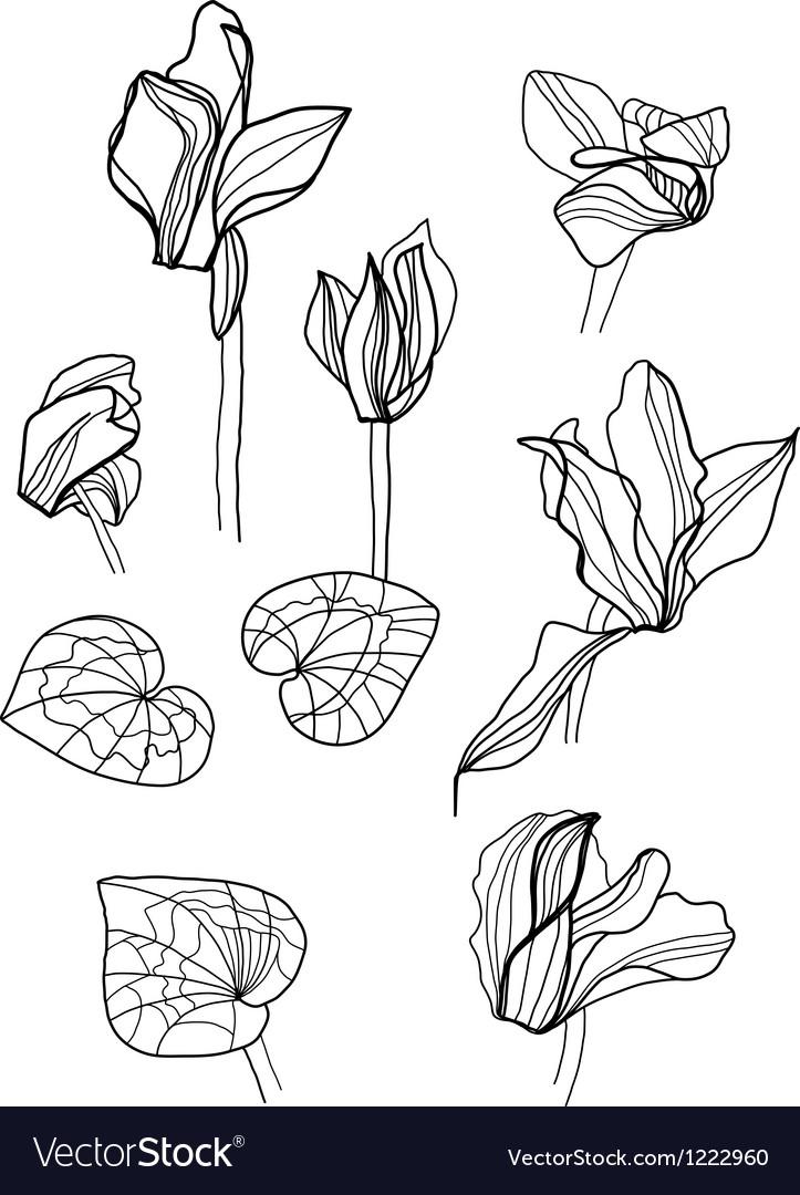 Cyclamens pen drawing set vector | Price: 1 Credit (USD $1)