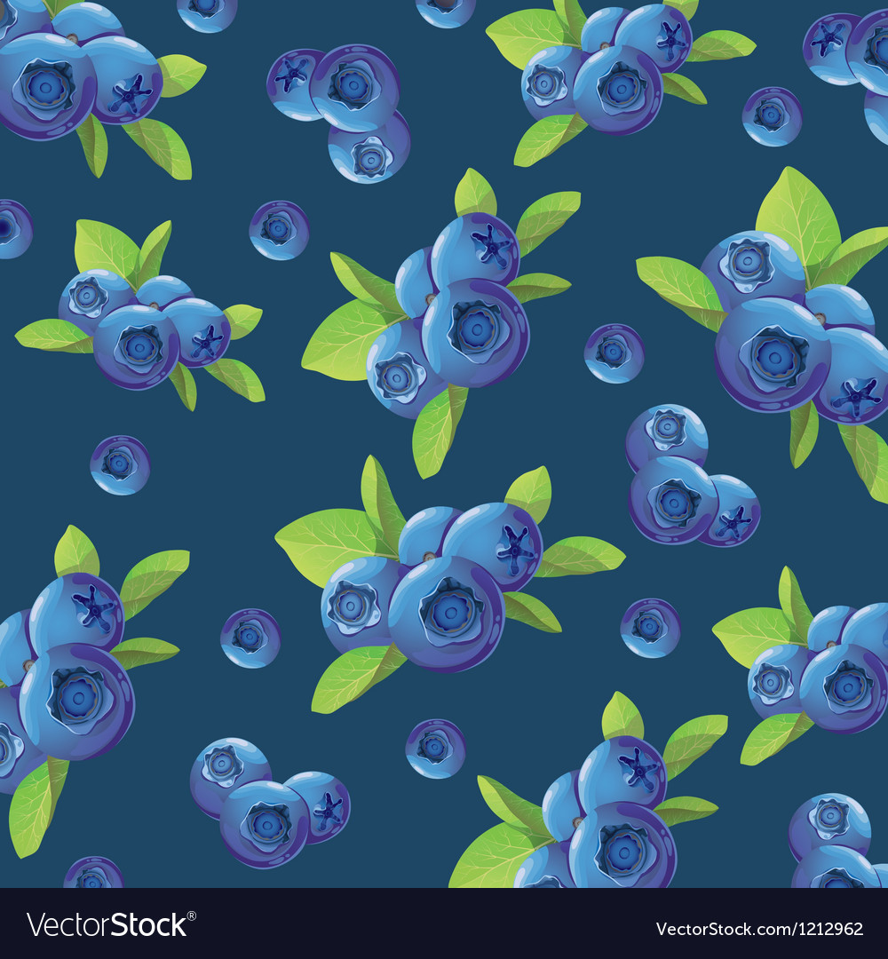 Background of the blueberries vector | Price: 1 Credit (USD $1)