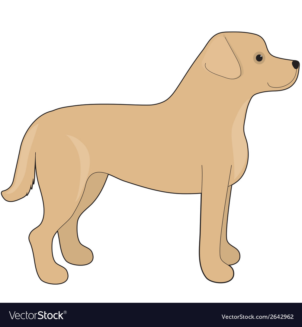Labrador retriever vector | Price: 1 Credit (USD $1)