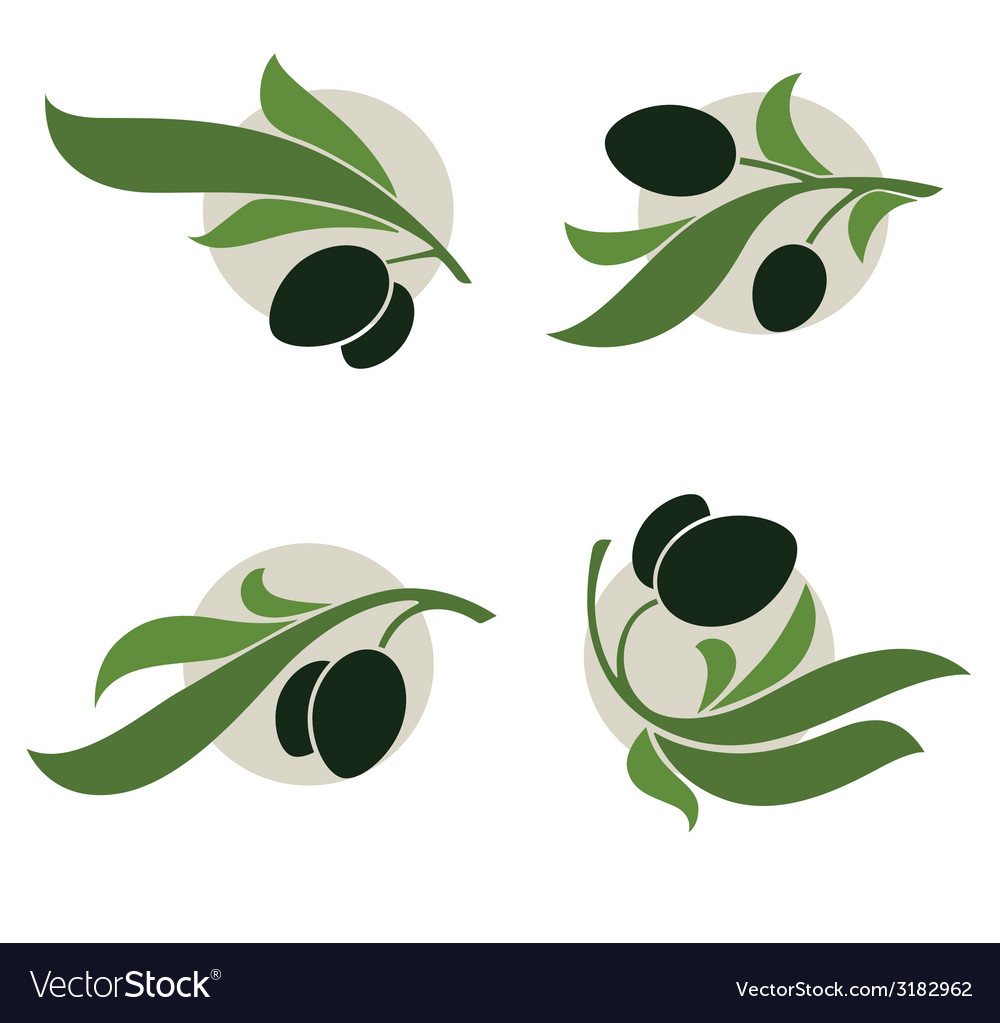 Olive vector | Price: 1 Credit (USD $1)