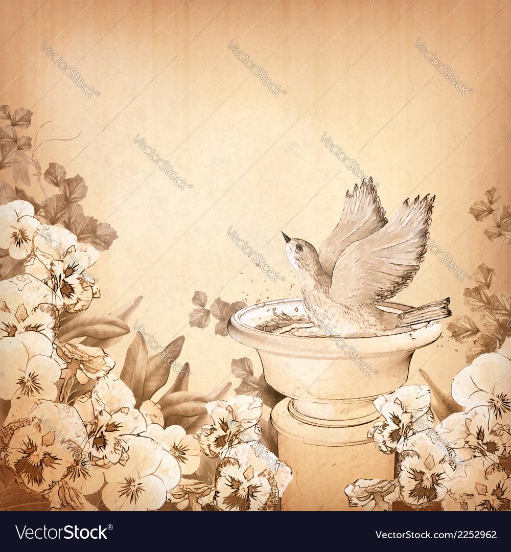 Pencil hand drawing bird in bath and pansy flower vector | Price: 1 Credit (USD $1)