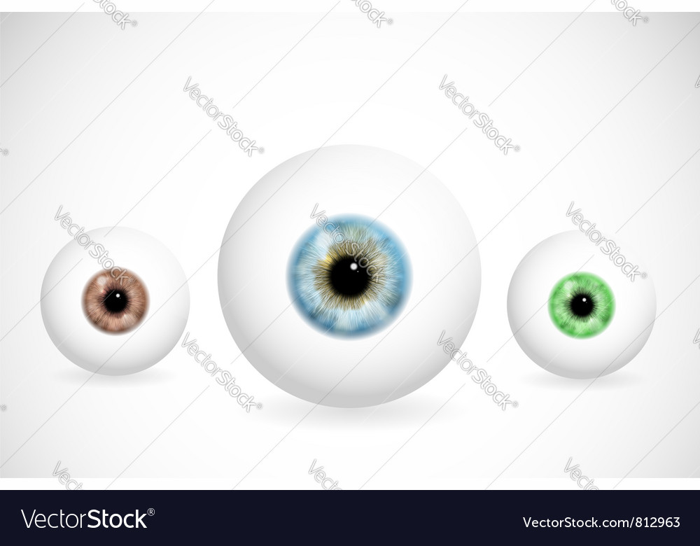 Eyes of different colors vector | Price: 1 Credit (USD $1)
