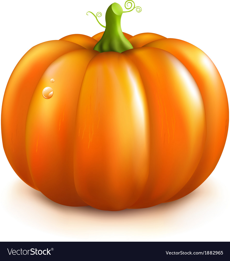 Orange pumpkin vector | Price: 1 Credit (USD $1)
