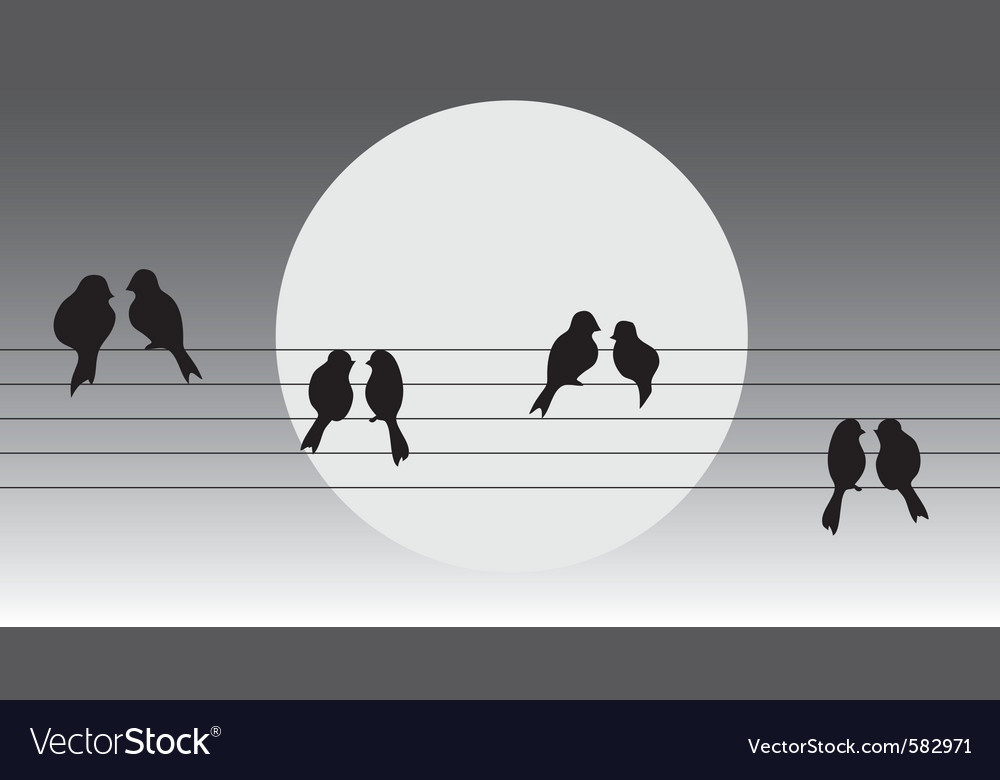 Birds on the wire vector | Price: 1 Credit (USD $1)