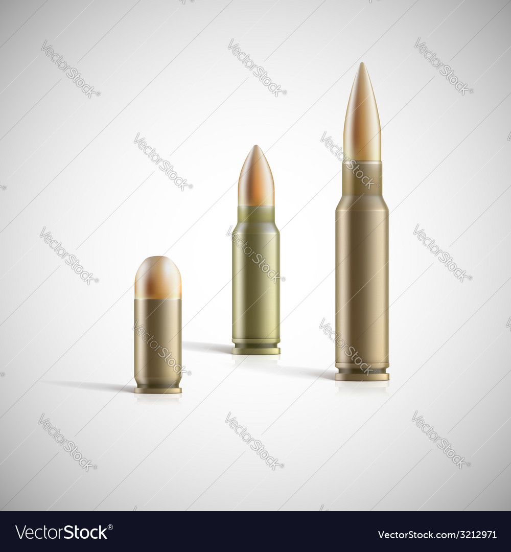 Rifle and pistol bullets isolated on white vector | Price: 1 Credit (USD $1)
