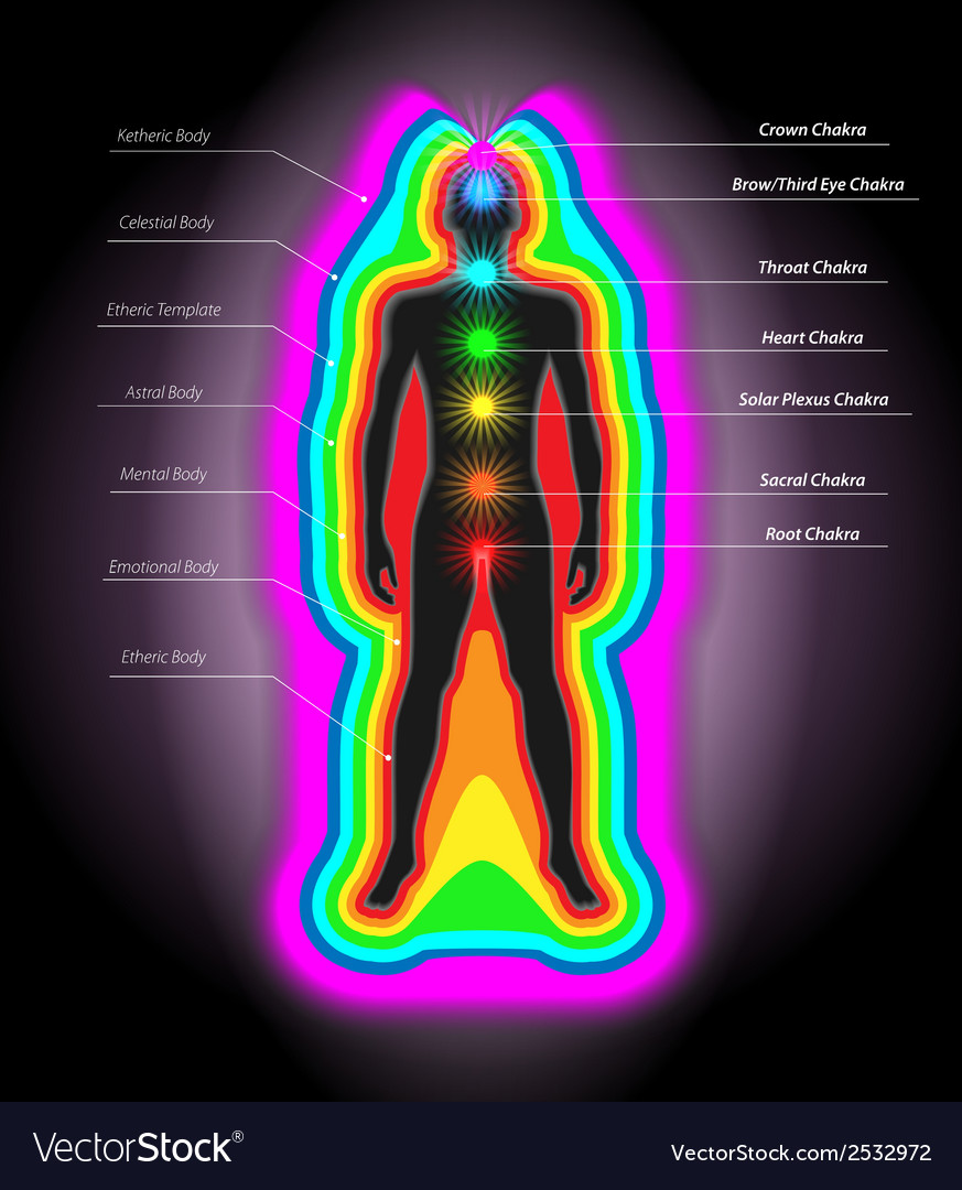 Auras and chakras vector | Price: 1 Credit (USD $1)