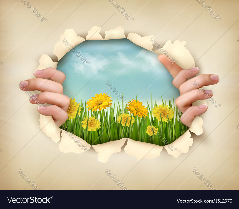 Retro nature background with grass and flowers and vector | Price: 3 Credit (USD $3)