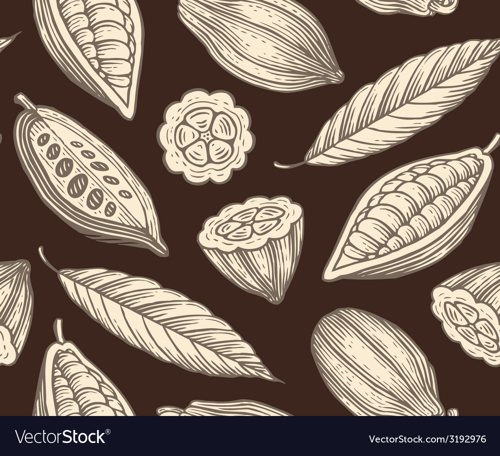 Cocoa pattern vector | Price: 1 Credit (USD $1)