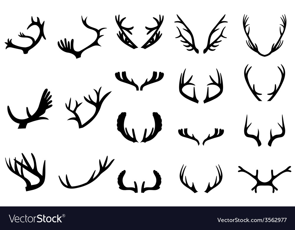 Collection of deer horns vector | Price: 1 Credit (USD $1)