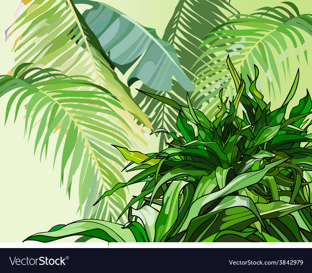 Green leaves of tropical plants vector | Price: 1 Credit (USD $1)